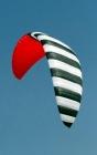 Zebra Kites Z3